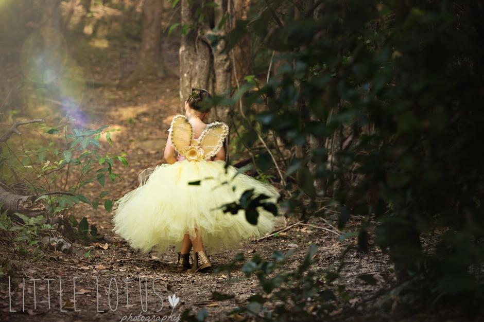 Little Lotus Photography Fairy photos